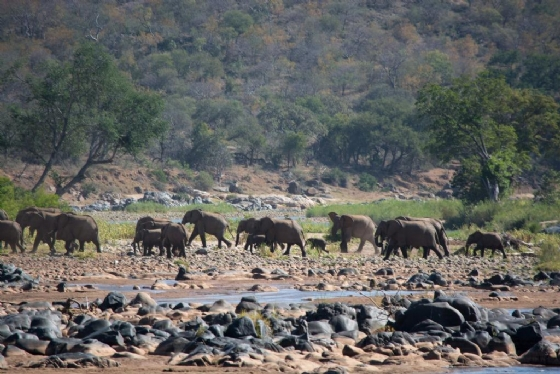Ellies crossing River by B36