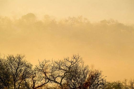 Haze by Uli A9