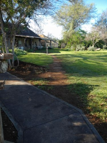 New pathway leading around the back of the office