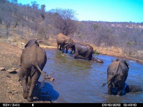 Pure bliss at Kudu Pan