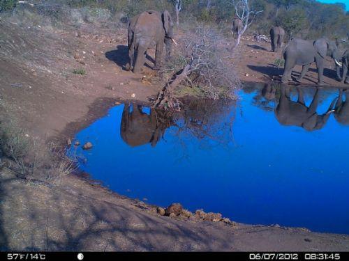 Reflections at Wildebeeste dam