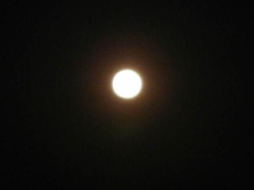 Spring moon by Daniel