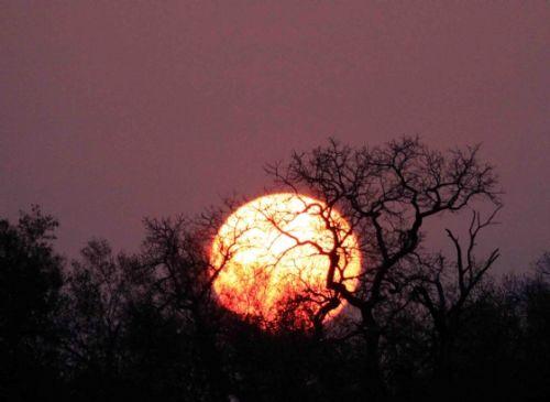 Sunset at Kudu pan by Nic Holzer