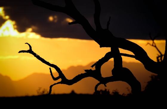 Sunset by Dan B33