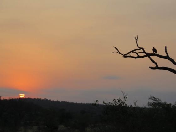 Sunset by JD B13