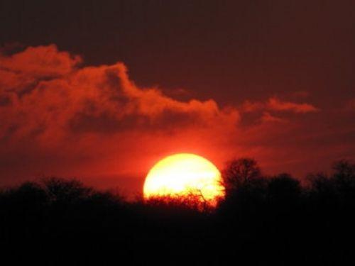 Sunset by Lee Sarkin 3