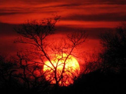 Sunset by Lee Sarkin 5