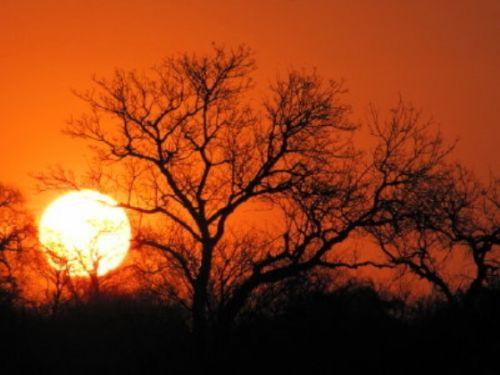 Sunset by Lee Sarkin