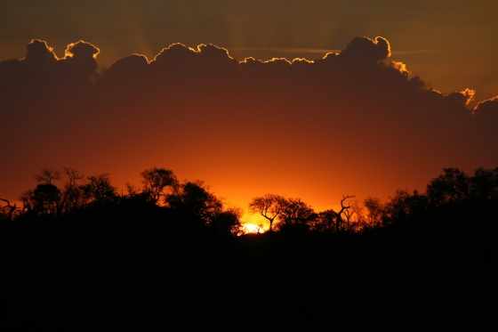 Sunset by Mally A5