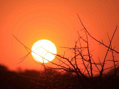 Sunset by Nic Holzer