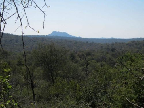 View across Olifants North in May by Anita