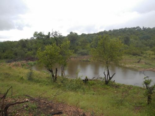 Wildebeest dam after 357mm rain